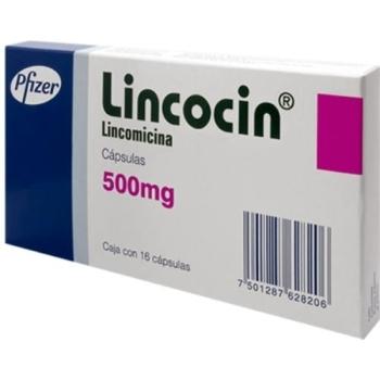 Lincocin Antibiotic