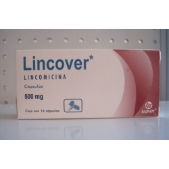 Famciclovir Drug Bank