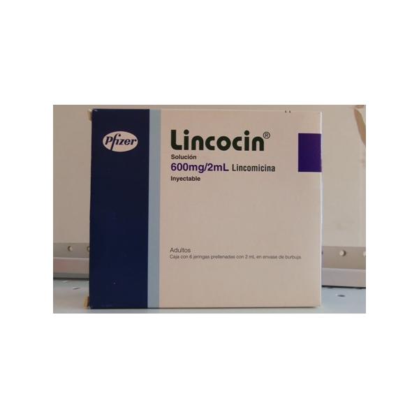 LINCOCIN (LINCOMICINA) 600MG/2ML SOL. INY