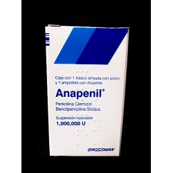 ANAPENIL (PENICILINA CLEMIZOL / BENCILPENICILINA SODICA